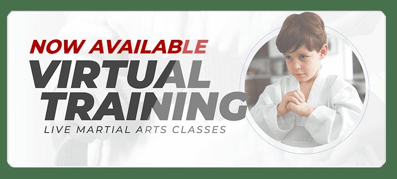 VIRTUALPOPUPSPARK.1.1, Oceanic Martial Arts Academy Townsville Queensland